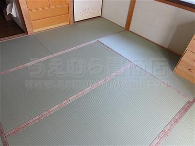 【わんにゃんペット用畳】うえむら畳ペット用畳で犬の粗相も防水畳で安心暮らし・・・。2