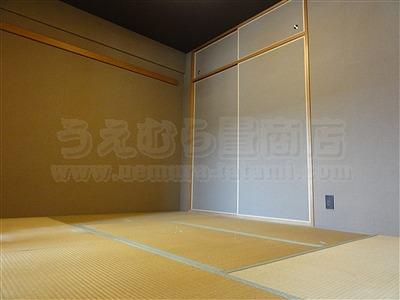 NEWアースカラー極薄縁無し琉球畳施工事例(大阪大東市)いまどきの畳屋さん家庭用国産畳専門店うえむら畳1