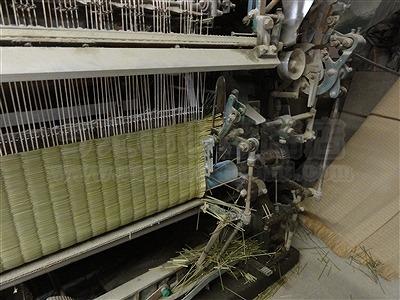 〜い草生産地熊本県八代市研修前乗り 特殊畳表生産農家編〜 大阪大東市家庭用国産畳専門店いまどきの畳屋さんうえむら畳2