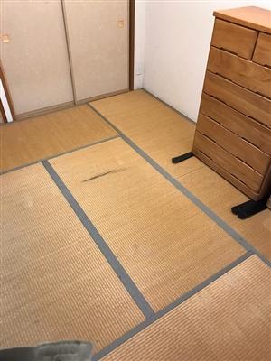 グリーンが良いんです。カラー縁無し琉球畳(セキスイ美草)大阪大東市6帖間施工例家庭用国産畳専門店うえむら畳1