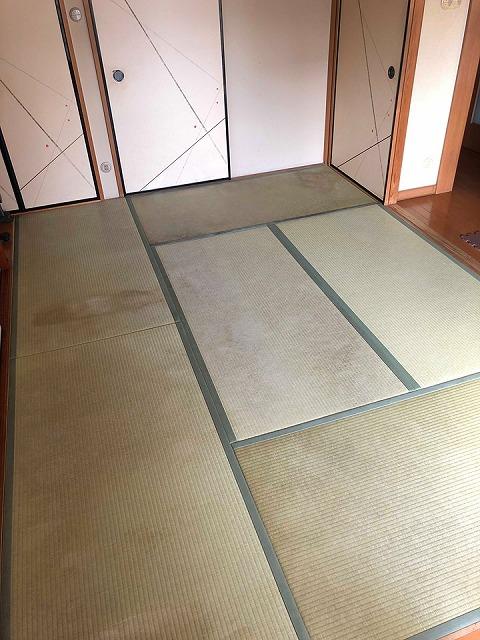 【ペット用和紙畳?】わんちゃんのオシッコでシミになった和紙畳から和紙畳へ?大阪府大東市イマドキの畳屋さん7