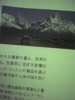 20051022_53328.jpg
