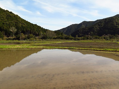 熊野古道と風の神さま