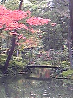 池にかかる赤。
