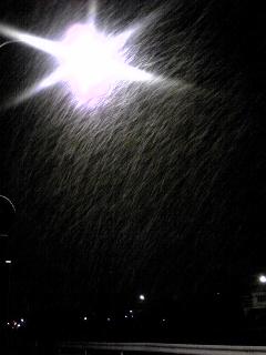 夜中の雪。