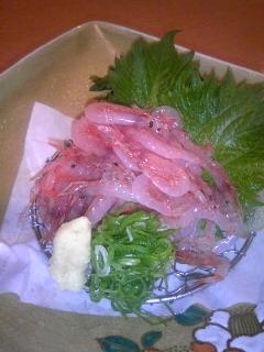 桜海老の刺身。
