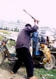 中国で殺された犬