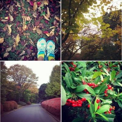 北の丸公園,紅葉