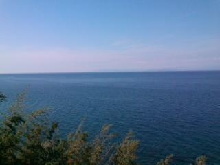 宿の前ノ海