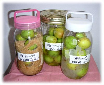 梅シロップ3種類