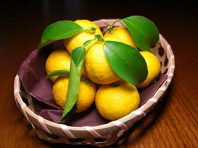 今日は「冬至」 柚子湯で温まりますか・・・