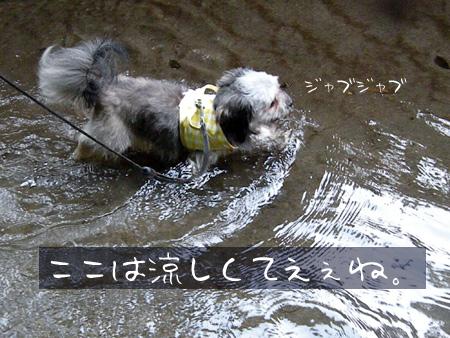 水の中を歩く