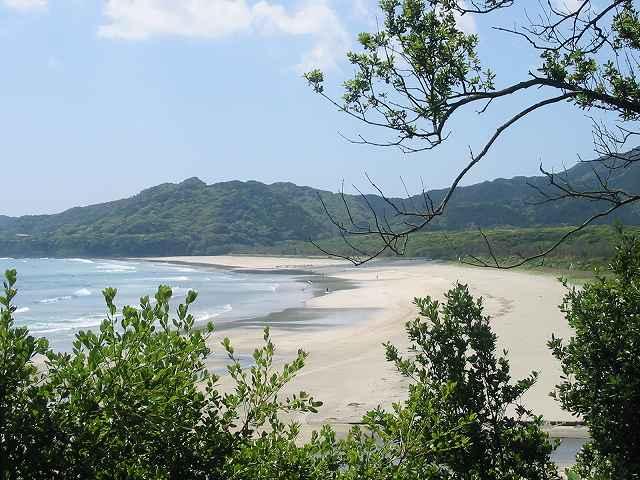 大岐の浜GW