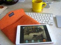 iPad miniだぜっ! ちなみに32GB Wi-Fiモデル