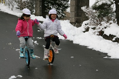 雪の日の一輪車