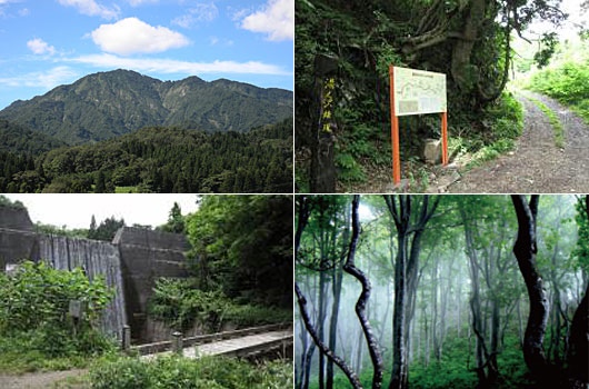 湯ノ沢岳 山開き登山