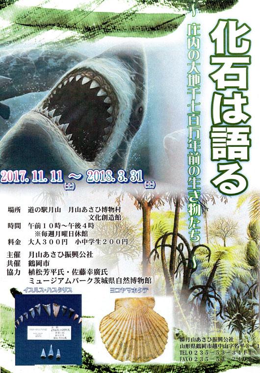 化石は語る 〜庄内の大地 千七百万年前の生き物たち〜