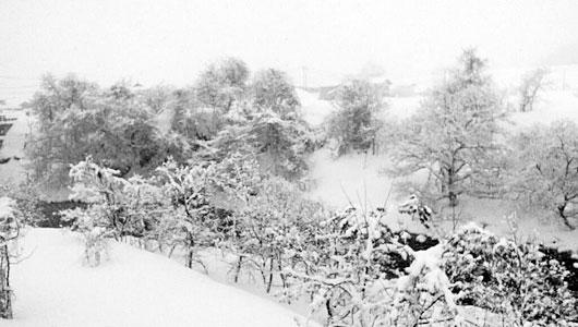 梵字川の雪景色