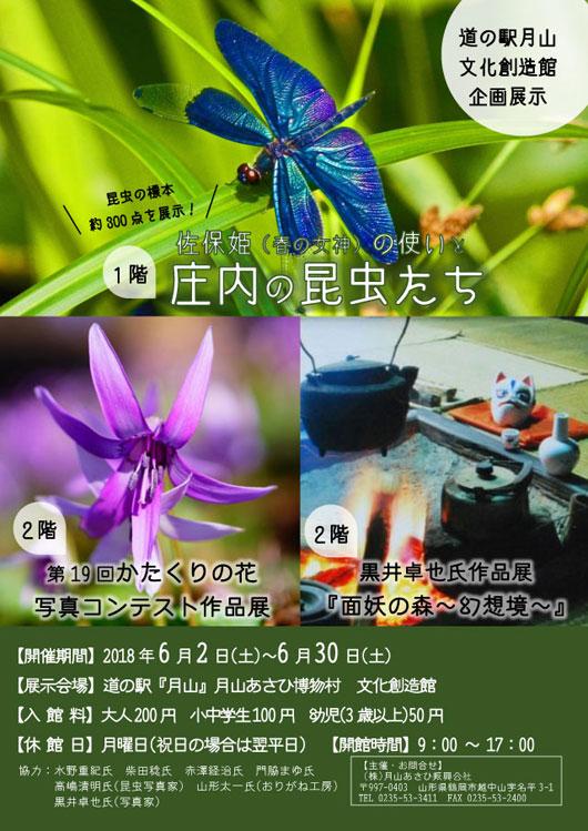 昆虫展と写真展