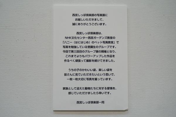 DSC02450_2.JPG