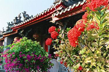 寺院の花。