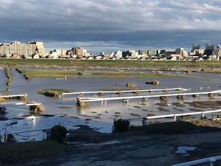 水没した練習馬場