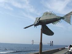ザ・フィッシュからの東京湾