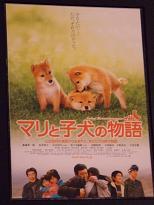 これは絶対に見て欲しい映画です。