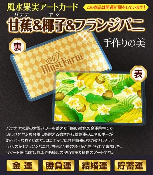 風水果実アートカード バナナ&ヤシ&フランジパニ