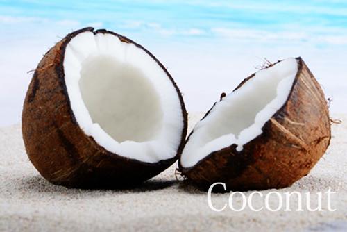 ココナッツイメージ1