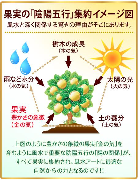 「陰陽五行」の集約イメージ図