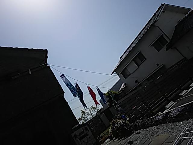20190505_2857330.jpg