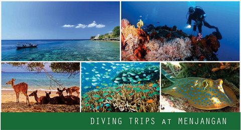 diving-menjangan.jpg