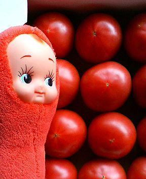 真っ赤なトマトさん