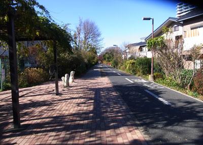 多摩湖自転車道を歩く(その1 ...