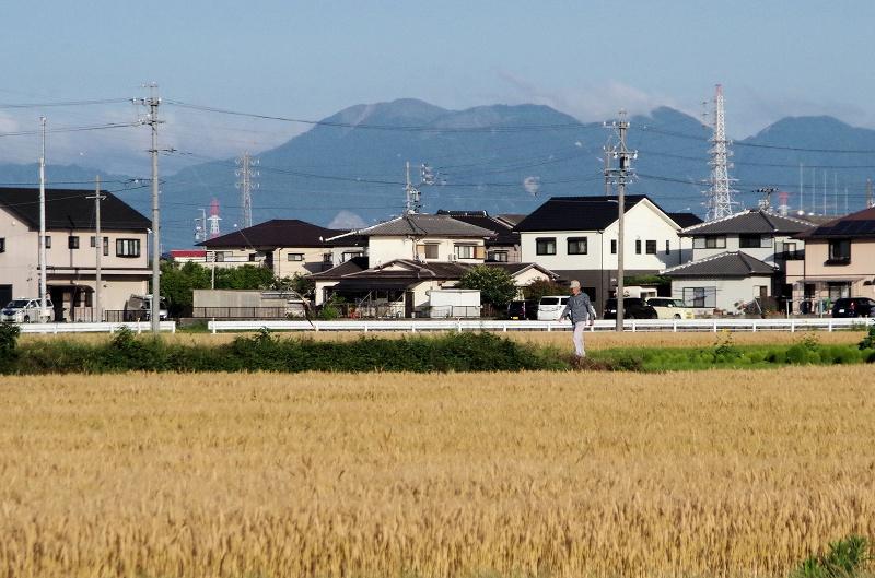 04-bakusyu03af.jpg