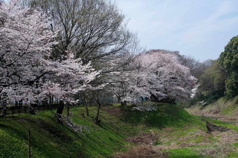sa-aichi-cyosya05af.jpg