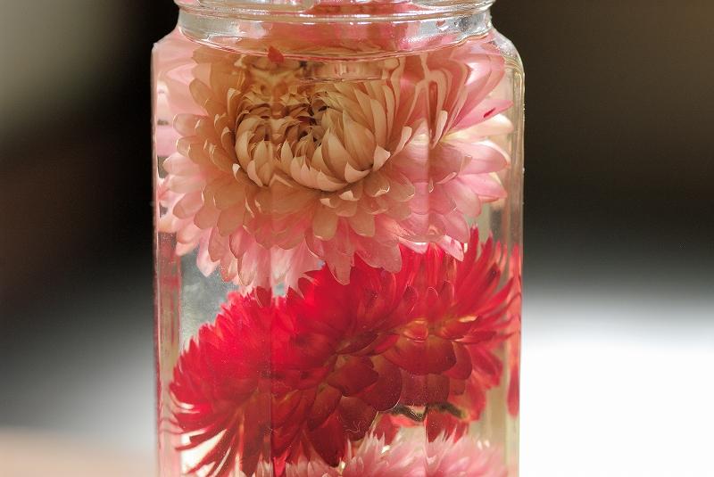 purizar-budo-flower02af.jpg