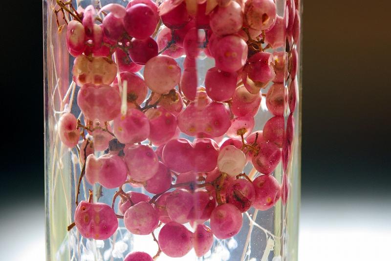 purizar-budo-flower06af.jpg