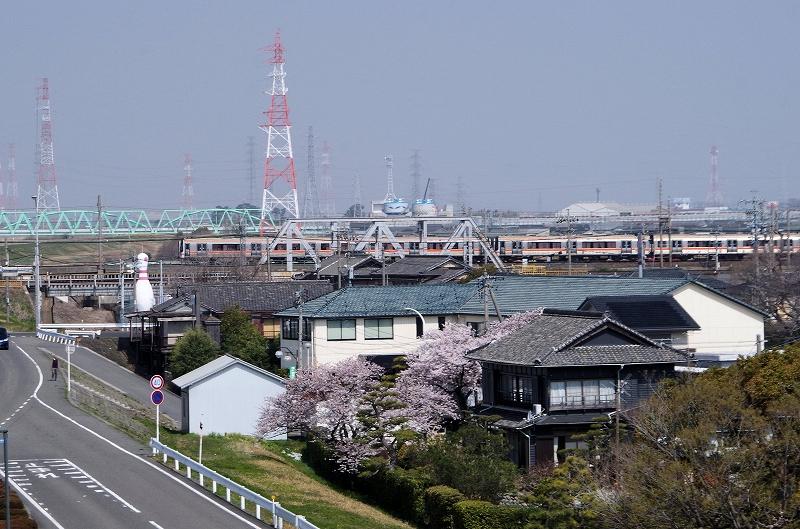 sakura-densya-02af.jpg