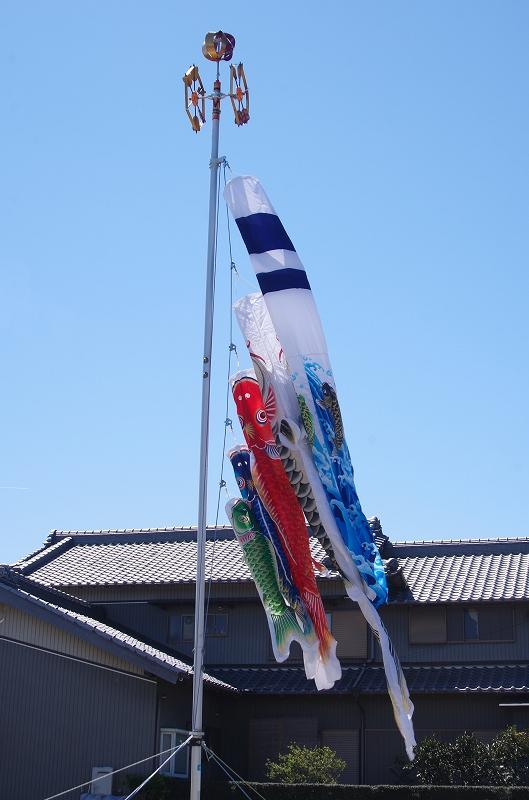 koi-nobori-10af.jpg