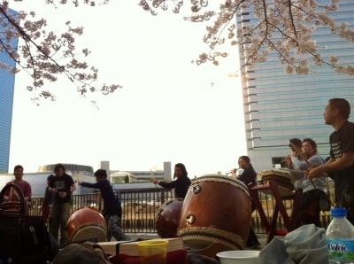 桜の下で和太鼓演奏(大阪城公園での花見)