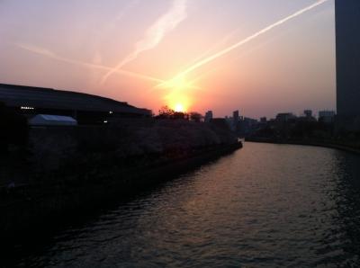 沈む夕日2(大阪城公園での花見)