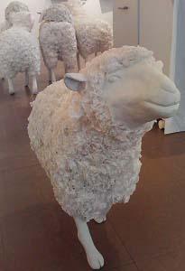 羊のゆきちゃん