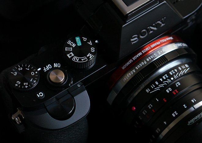 DSC06662a.jpg