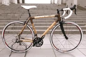 竹自転車.jpg