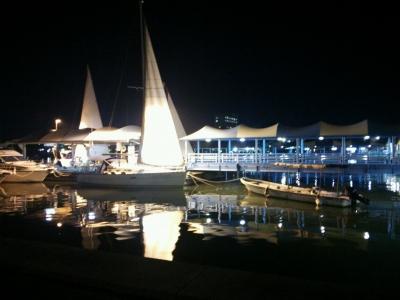night ヨット