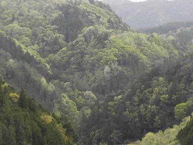 周囲の山々の色合いは刻々と変化し美しく生命にあふれ、神聖です。