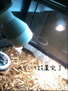 IMG_53150001.jpg