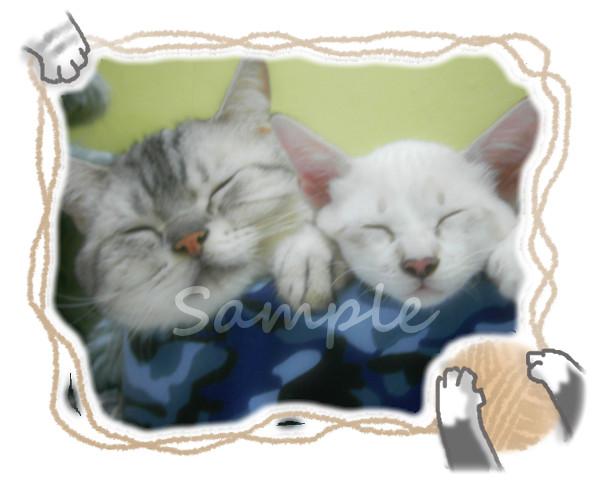 毛糸と猫手フレームサンプル